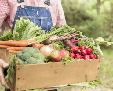 Organic food suppliers face £220 million ban on exports