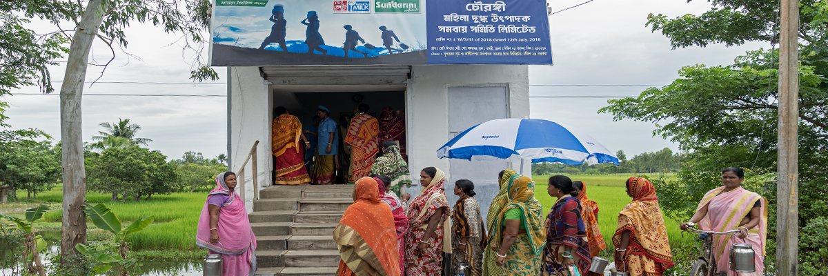 Sundarbans women show the way - The Hans India
