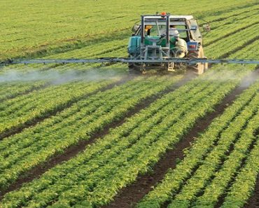 Global Bio-Herbicides Market