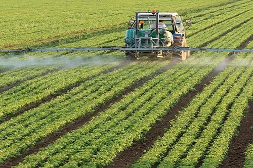 Global Bio-Herbicides Market