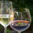 Zimbabwe: Wine Maker - Zim Drinkers Could Be Imbibing Harmful Wines, '...
